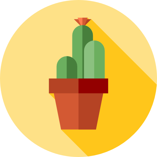kinds of cactus plants